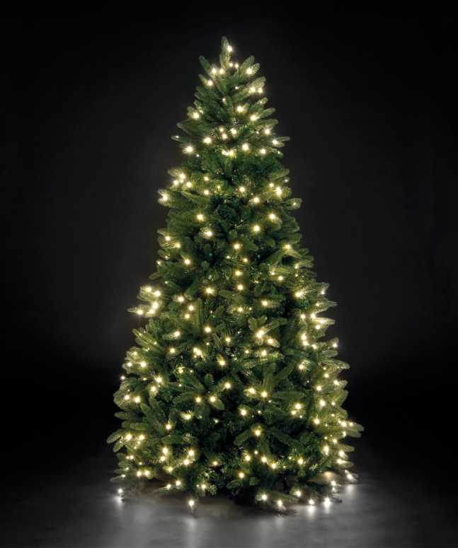 A lit christmas tree stands against a black background, illuminating it with a gentle radiance.